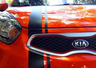 Realización / Montaje: vinilo decorativo para transporte automotor