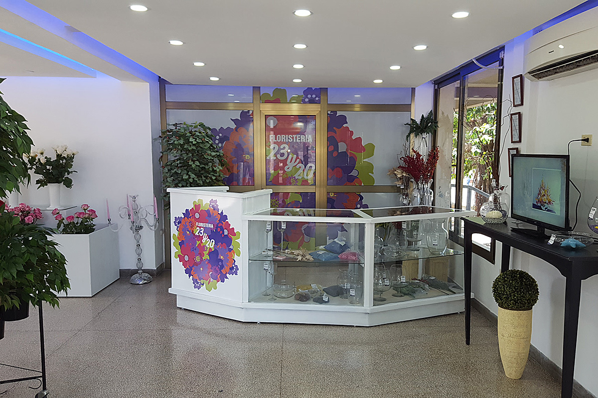 Diseño de Interiorismo: Floristería 23